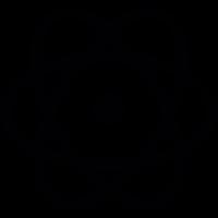 Atomic orbitals vector