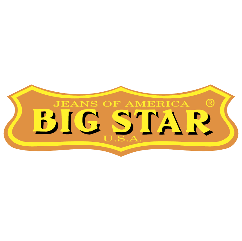 Big Star 5395 vector