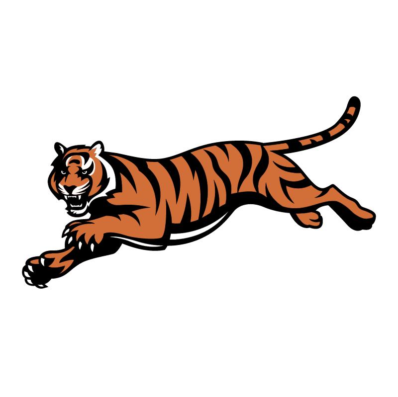 Cinncinati Bengals vector logo