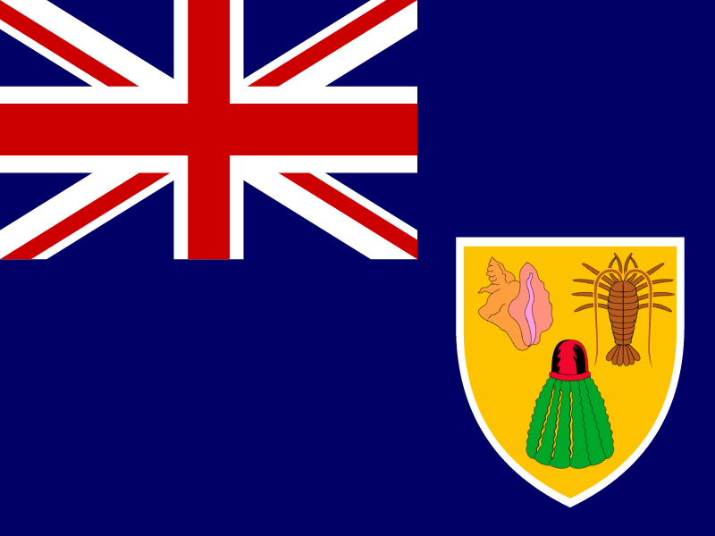 Flag of Turks and Caicos Islands vector