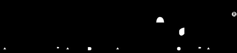 GULFSTREAM vector