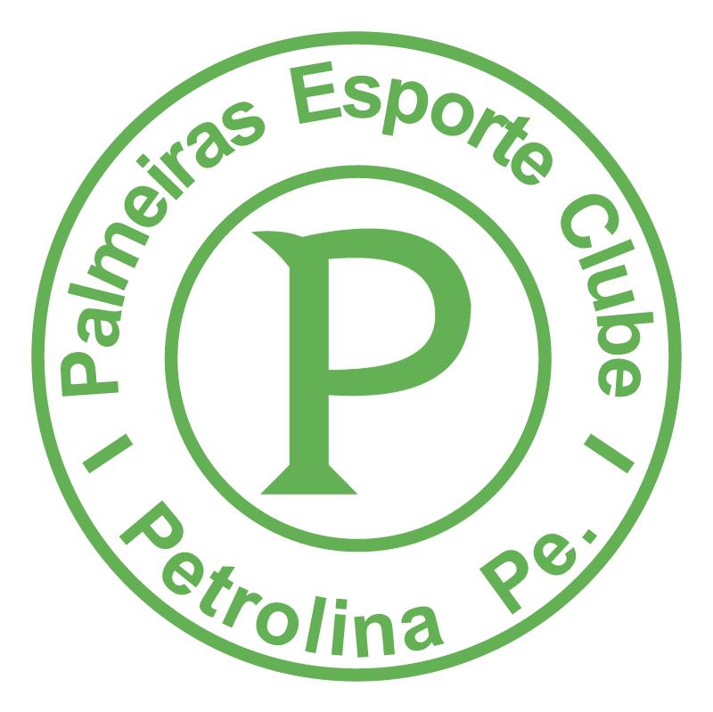 Palmeiras Esporte Clube de Petrolina PE vector