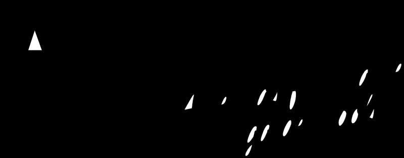 AMES GARDEN TOOLS vector logo