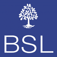 BSL 61996 vector
