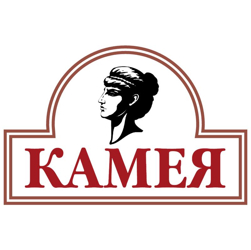 Kameya vector