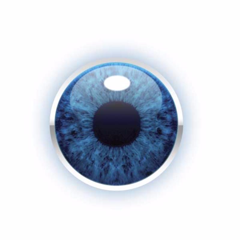 BC eye final copy vector