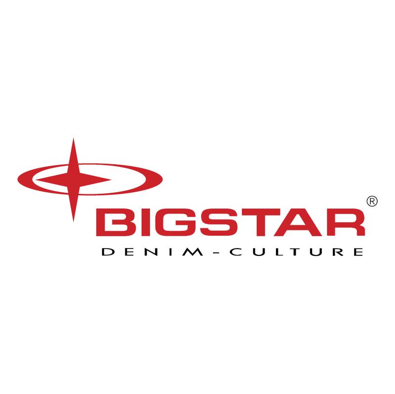 BigStar vector