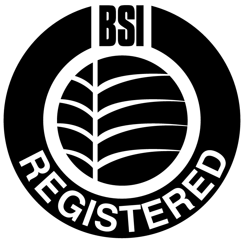 BSI 18761 vector