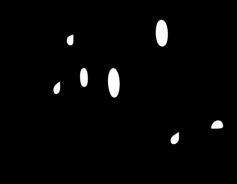Carlson Wagonlit vector