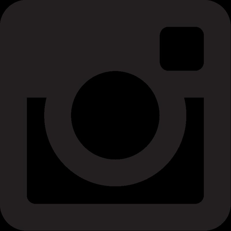 Instagram Glyph vector
