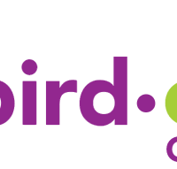 Jobbird.com vector