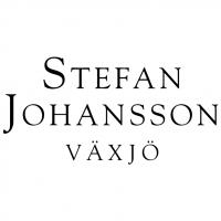 Stefan Johansson vector