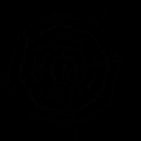 Octagonal Spider Web vector