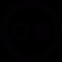 Flickr round logo vector