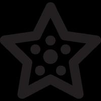 Summer Starfish vector