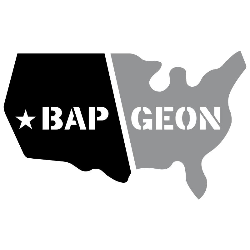Bap Geon 4171 vector