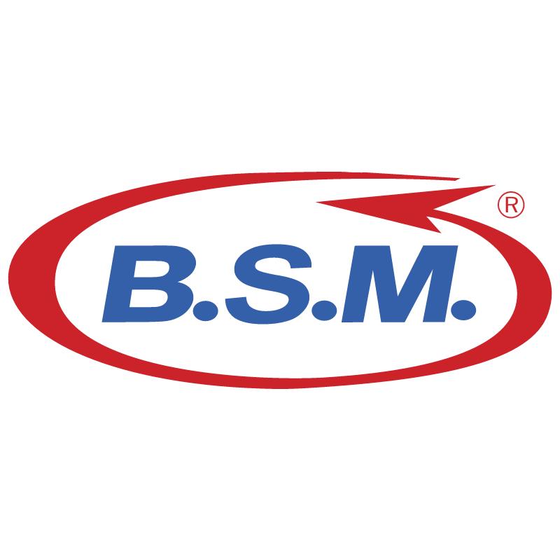 BSM vector