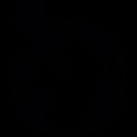 GEO targeting vector