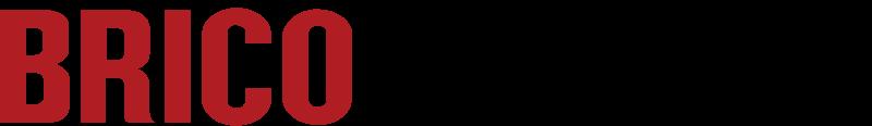 Bricomarche logo vector