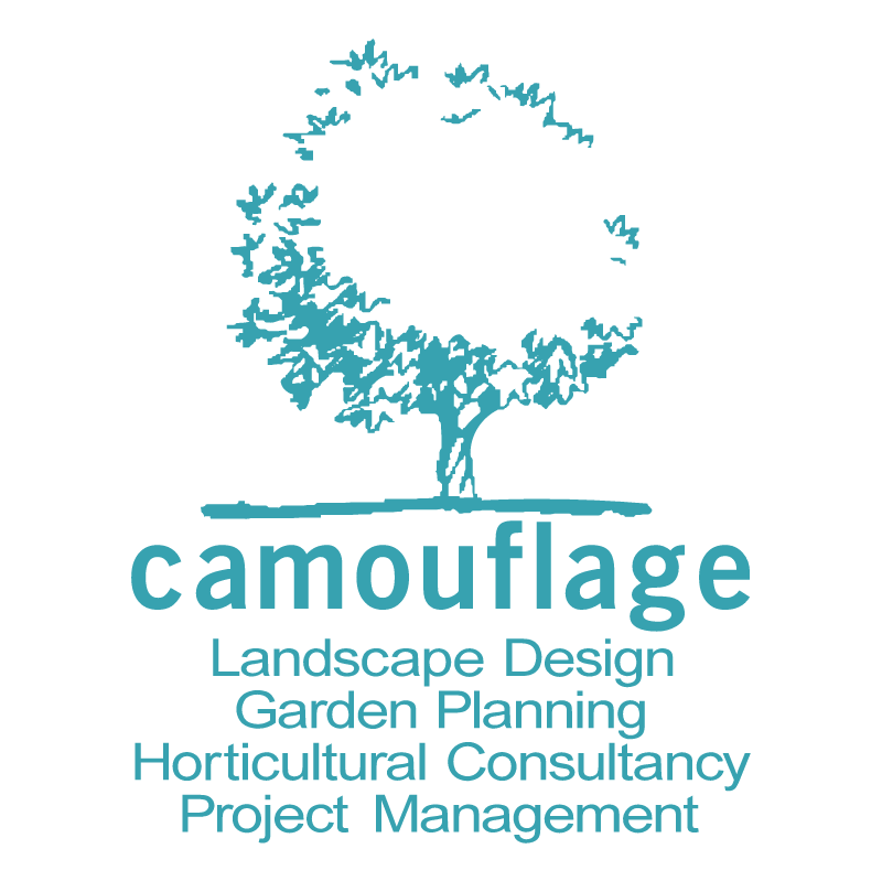 Camouflage Landscape Design vector