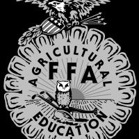 FFA 2 vector