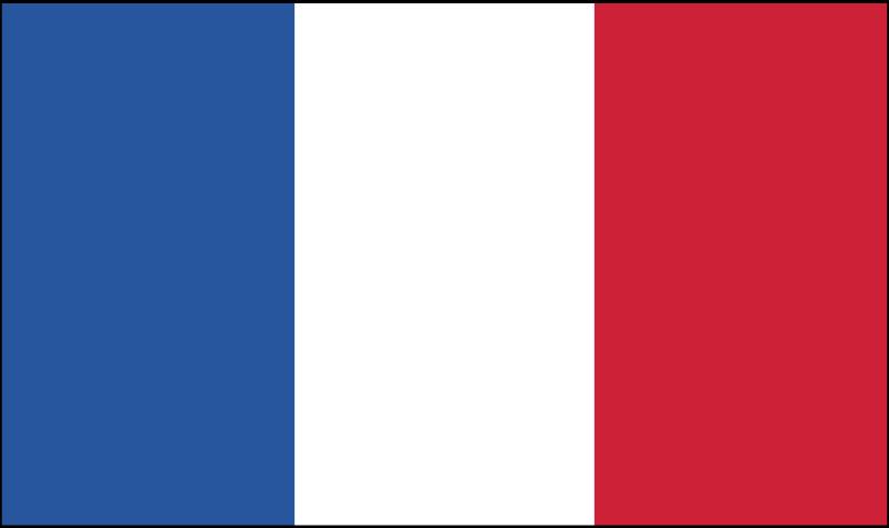 France vector logo