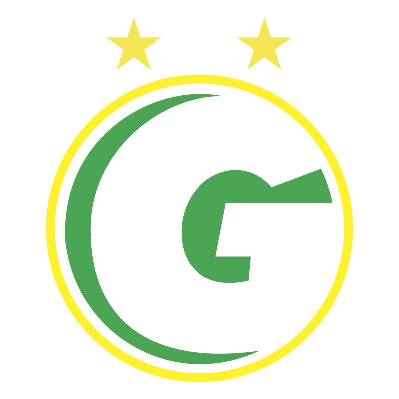 Gurupi Esporte Clube de Gurupi TO vector