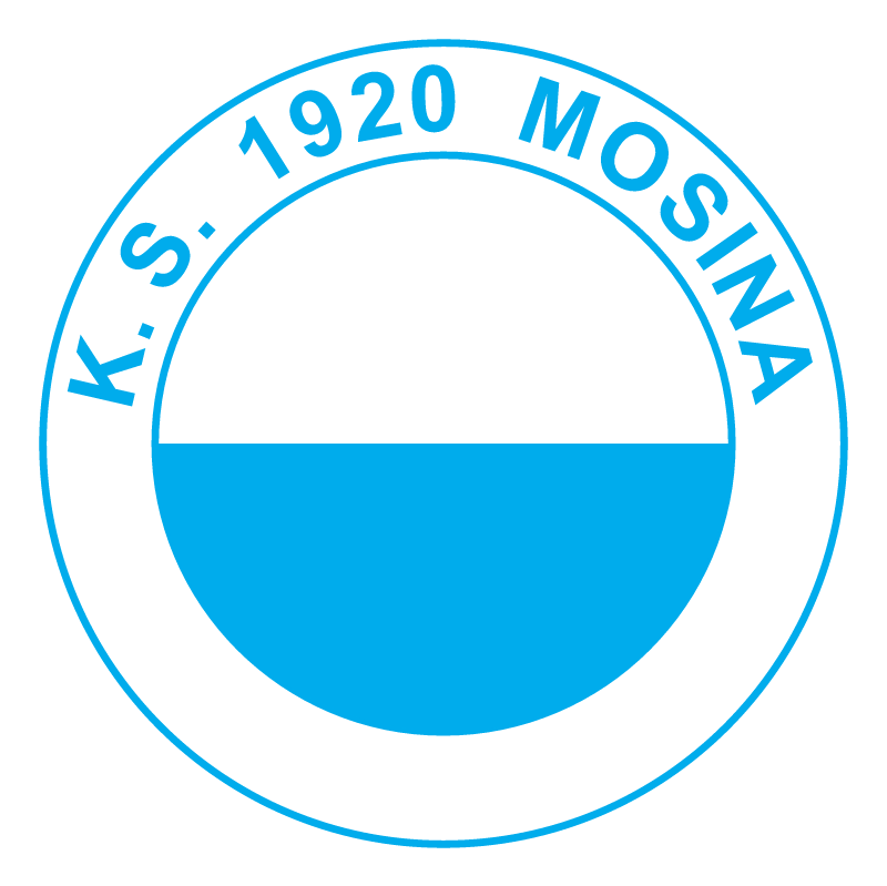 KS 1920 Mosina vector