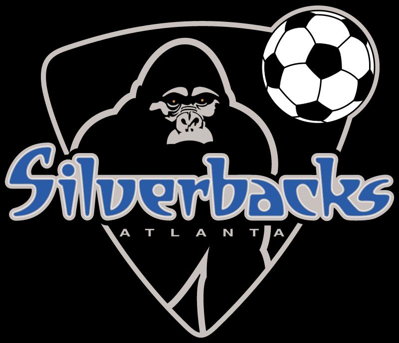 SILVER 1 vector logo