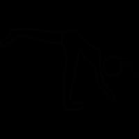 Somersault Athlete vector