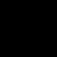 LP Player vector