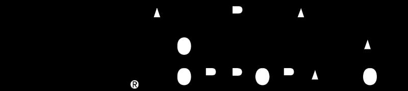 AMER CONTINENTAL vector
