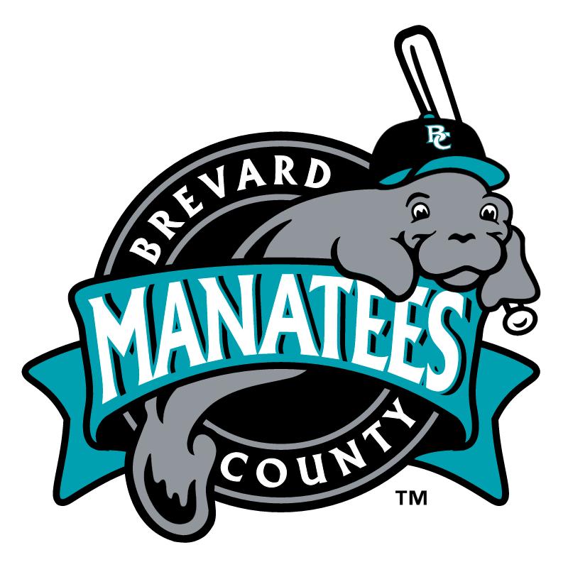 Brevard County Manatees vector
