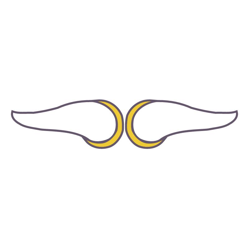 Minnesota Vikings vector