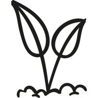 Leaves Germinating vector
