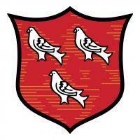 Dundalk FC vector