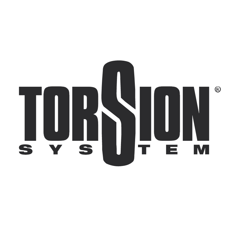Torsion System vector
