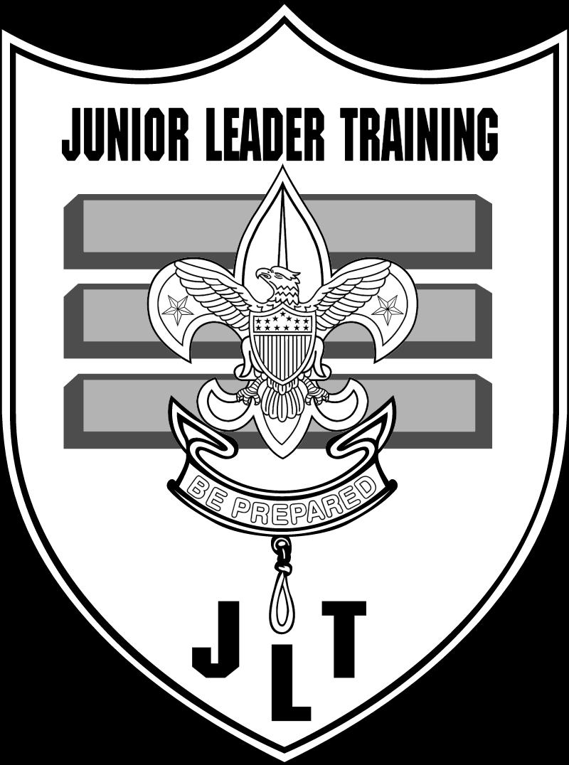 Boy Scouts Jr vector