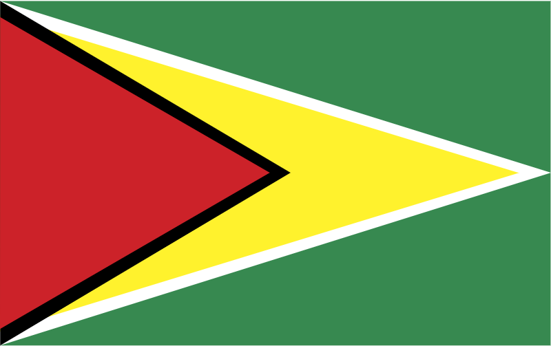 guyana vector