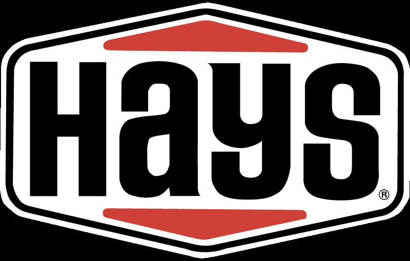 HAYS vector