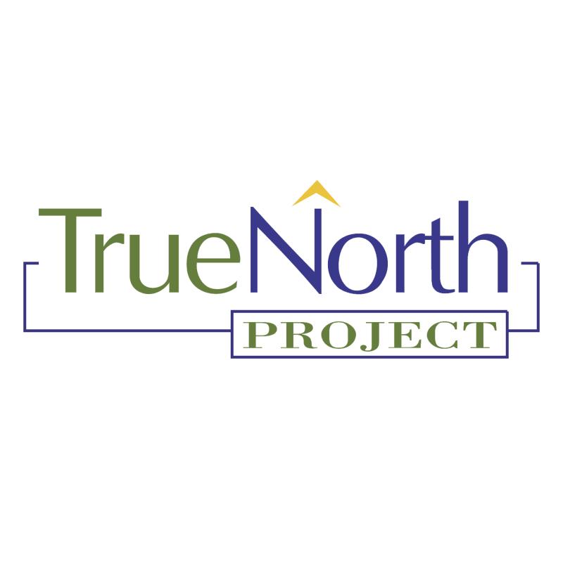 True North Project vector