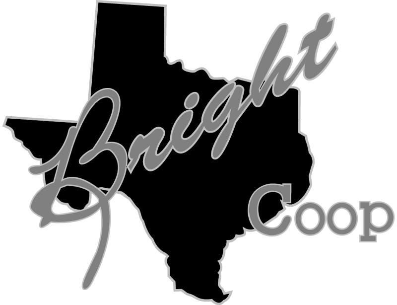 bright coop vector