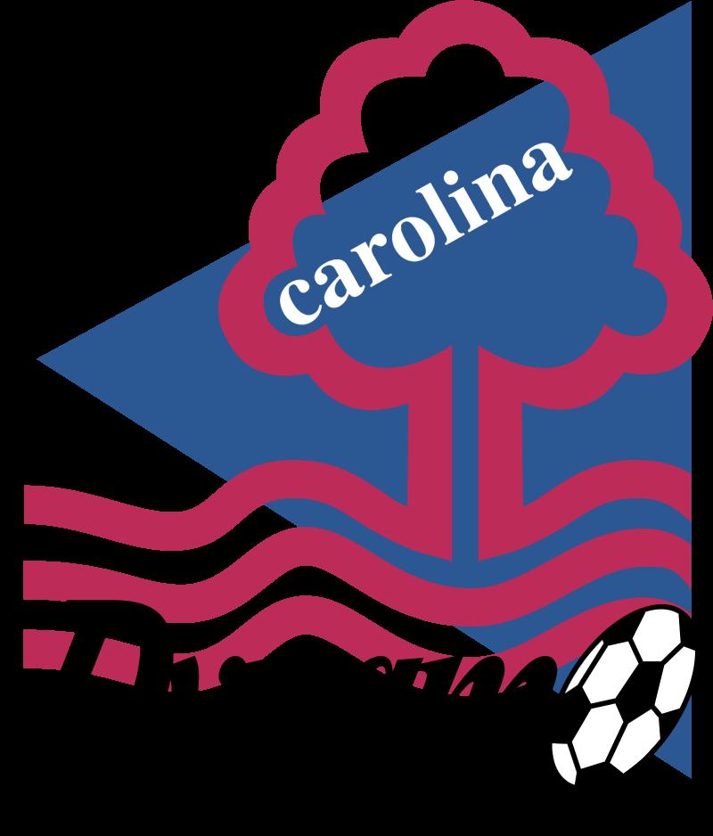 Carolina Dynamo vector