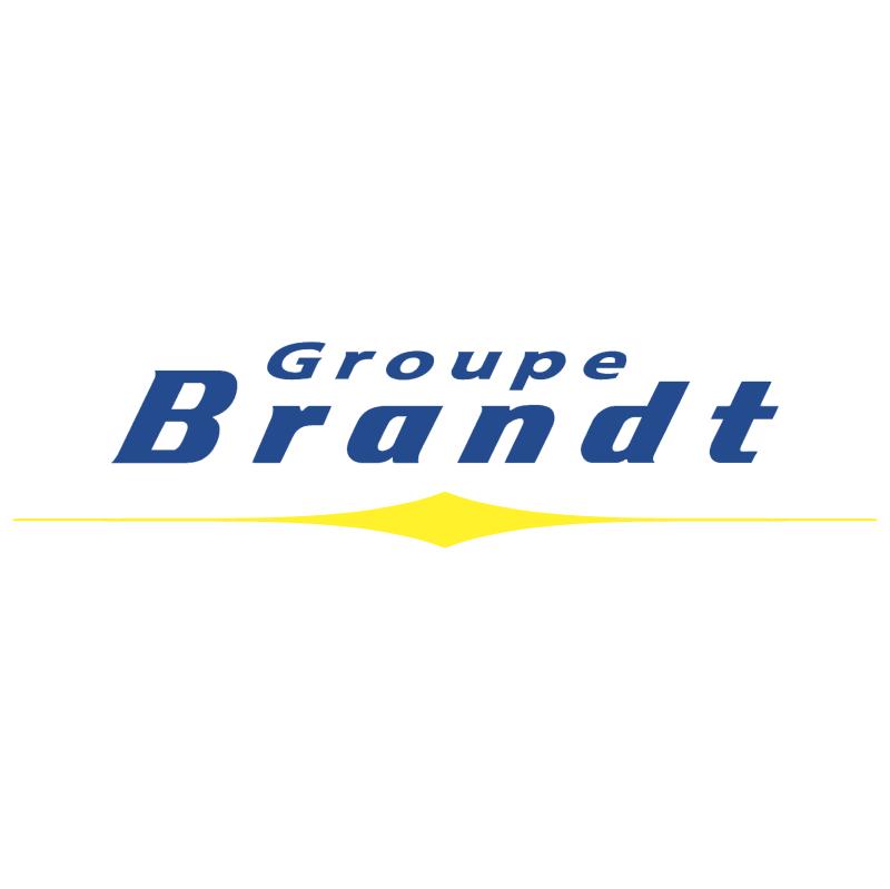 Brandt Group vector