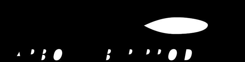 CARBON FIBER PRODUCT vector