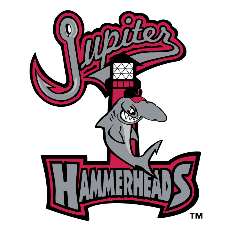 Jupiter Hammerheads vector
