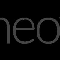 Neovim vector