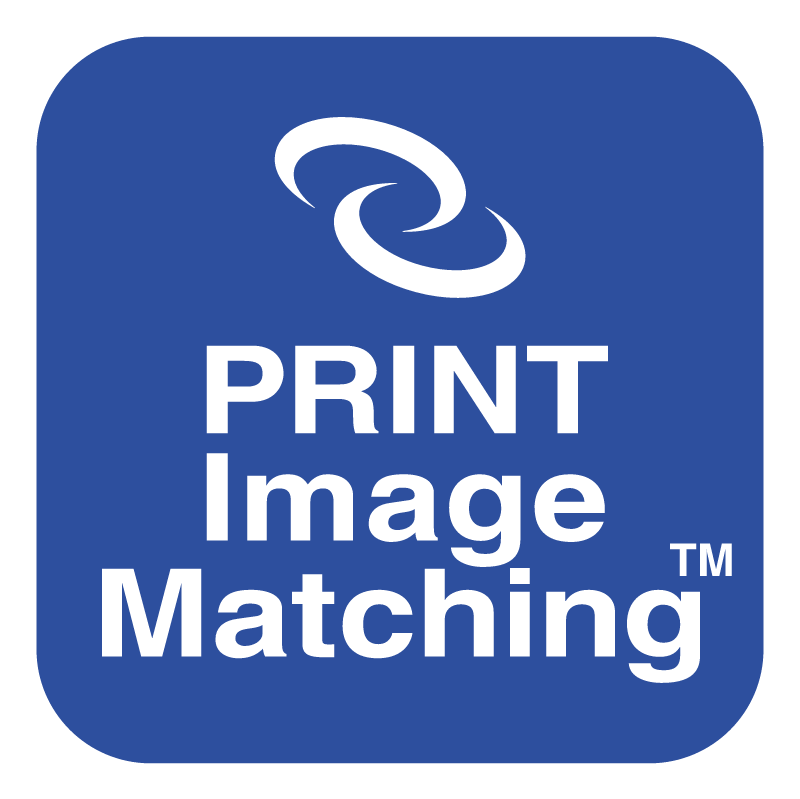 Print Image Matching vector