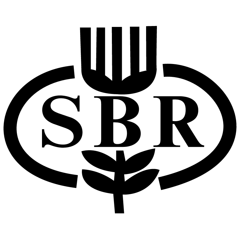 SBR Bank vector