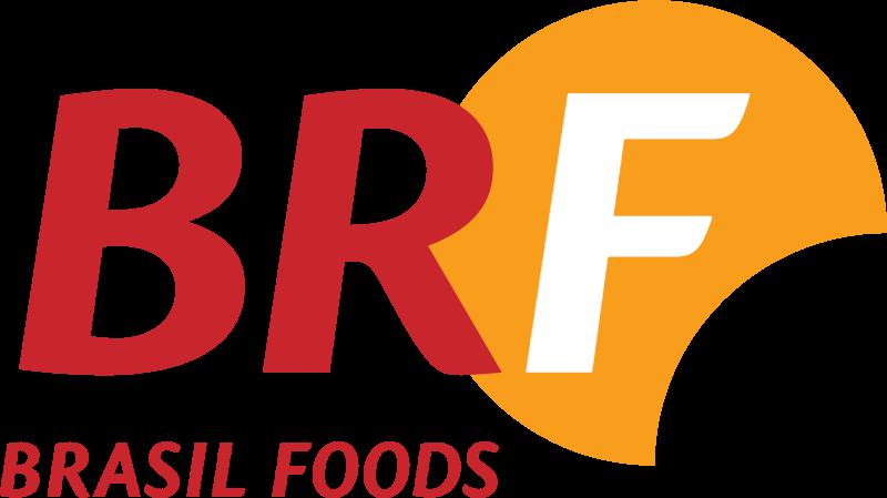 Brasil Foods vector